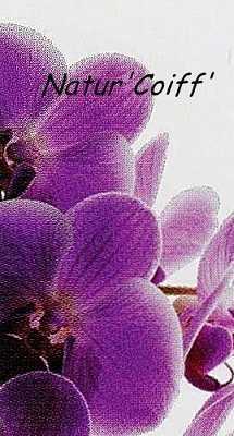 nature'coiff63510Aulnat