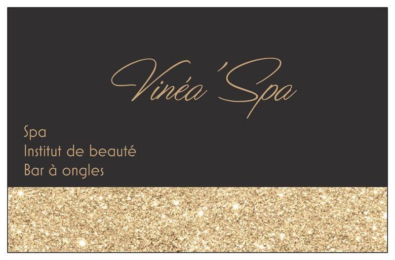 Vinéa`Spa69115Chiroubles